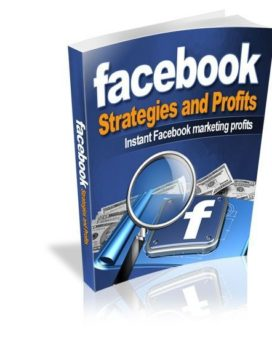 Facebook Strategies And Profits