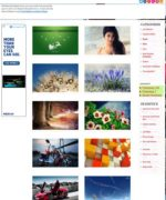 Premium Wallpaper Wordpress Theme V3