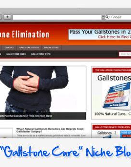 Gallstone Elimination Niche Blog