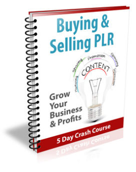 Buying & Selling PLR Newsletter