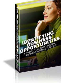 identifying business opportuni