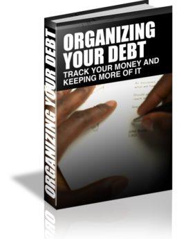 organizing your debt - plr