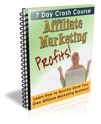 affiliate marketing profits -