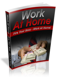 work at home - plr